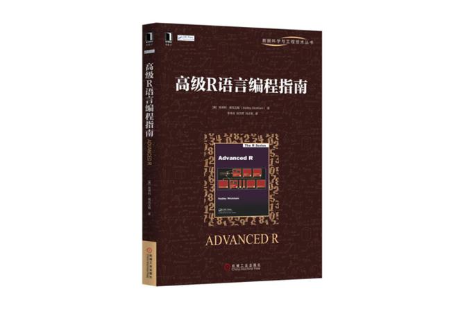 高级R语言编程指南