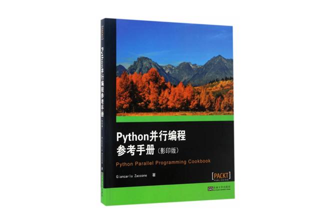 Python并行编程参考手册