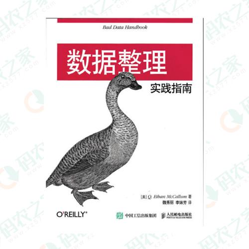 数据整理实践指南 PDF